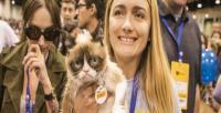 Bu hırçın kedi sahibini milyoner yaptı