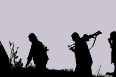 2 terörist daha teslim oldu