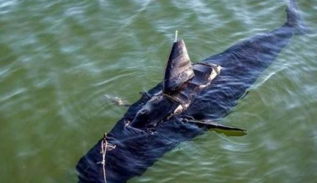 ABDnin yeni sailahı: Casus balık