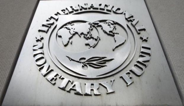 IMFden 4. Madde Konsültasyon raporu